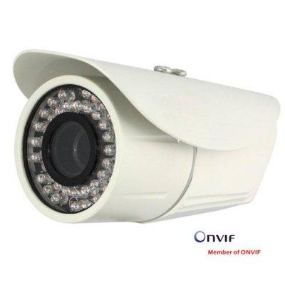 MP-9213 H.264 2 Mp Realtime Gece Görüş Full HD dual IR-Cut IP Kamera